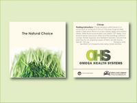 """Chives Herb Seed Packet (3.25"""" x 3.25"""")"""