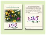 Custom Wildflower Mixture 11 Variety Seed Packet