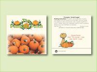"Pumpkin 'Small Sugar' Seed Packet (3.25""x 3.25"")"