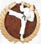 Custom Cherry Finish Plaque w/ Resin Karate Plaque Mount Medallion (6