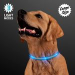 Custom Blue Light Up Dog Collars, Large