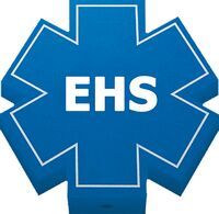 Foam Antenna Topper - Medical Star of Life