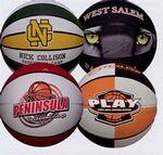 Custom Logo 16 panel Rubber Basketball