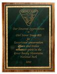 Custom American Black Walnut Plaque w/Green Marble Mist Series Plate (10