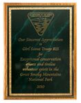 Custom Solid Oak Plaque w/ Green Marble Mist Series Plate (10