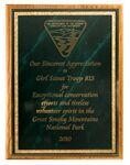 Custom Solid Oak Plaque w/ Green Marble Mist Series Plate (9