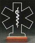 Custom EMS Award on a Rosewood Base - Acrylic (8