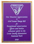 Custom Solid Oak Plaque with Purple Plate & Silver Border (15