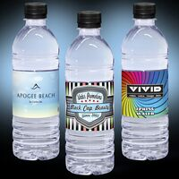 16.9 oz. Custom Label Spring Water w/Black Flat Cap - Clear Bottle
