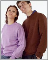 CUSTOM COLORS 100% Cotton Crew Neck Pullover Sweater, man/unisex. Made in the U.S.A.