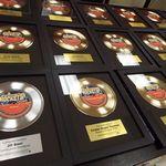 Custom Gold or Platinum Basic Framed Record Award
