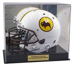 Custom Full Size Helmet Display Case With Black Base and mirror back