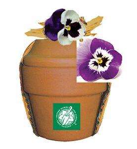 Plant Kits -