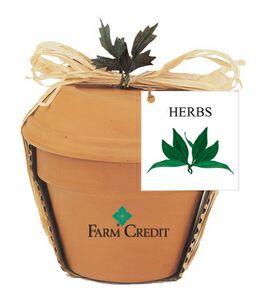 Custom Made Parsley Herb Plant Kits