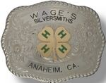 Custom Rectangular Special Digitized Belt Buckle