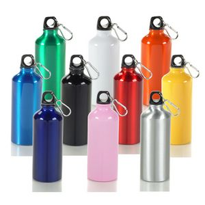 20 Oz. Aluminum Sports Bottle W/ Matching Color Carabiner (3 Days)