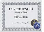 Custom 12 Point Card Stock Diploma/ Certificate