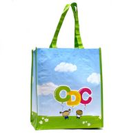 PP Woven Reusable Tote Shopping Bag