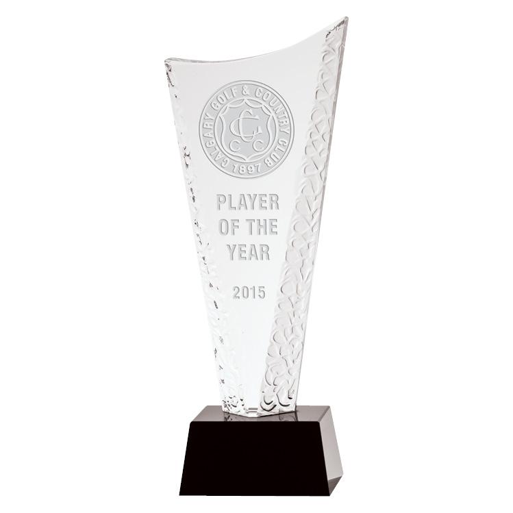 Surf Award - 10