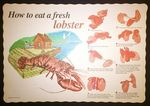 Custom How To Eat A Lobster Placemats (Pack of 100)