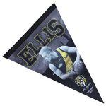 Team Flag/ Pennant (45cmx20cm)