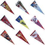 Team Flag/ Pennant (76cmx30cm)