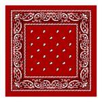 Red Paisley Bandana (Case of 144)