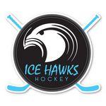 Hockey Puck Sticks (4