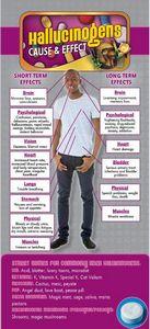 Hallucinogens Cause & Effect Rack Card 4