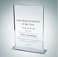 Vertical Rectangle Clear Glass Award Plaque (Small)