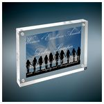 Custom Clear Magnetic Acrylics
