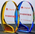 Custom Custom Glass Award