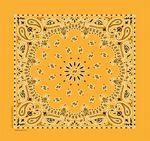 Paisley Cotton Bandanna (Imported) - Printed