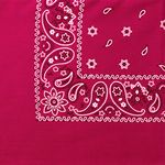 Paisley Polyester Bandanna (Imported)