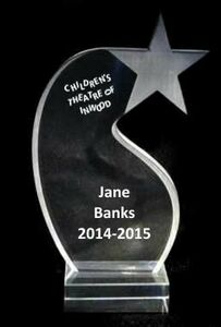 EXCLUSIVE! Acrylic and Crystal Engraved Award - 7 Tall Shooting Star